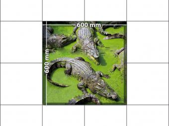 panele podłogowe 60 x 60 krokodyle