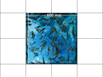 panele podłogowe 60 x 60 Ławica