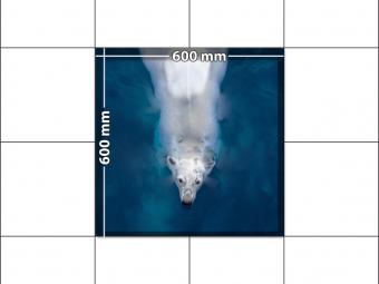 panele podłogowe 60 x 60 Polarny