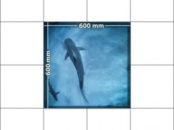 panele podłogowe 60 x 60 Rekin