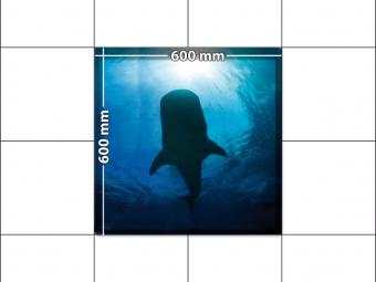 panele podłogowe 60 x 60 wieloryb