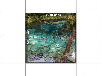 panele podłogowe 60 x 60 zatoka