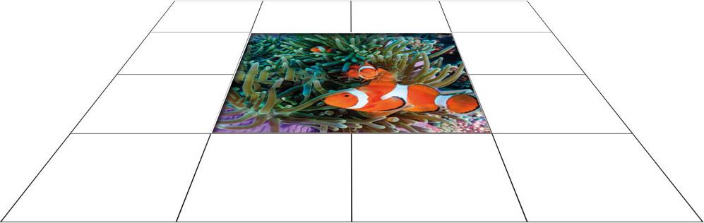 panele podłogowe 60 x 60 Błazenek