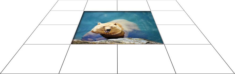 panele podłogowe 60 x 60 niedzwiedz